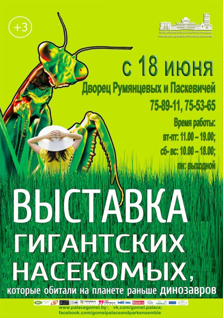 """В Гомеле начнёт работу выставка """"Гигантские насекомые"""""""