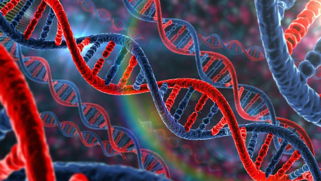 Ученые убеждаются, что генетика человека влияет на возможность заражения коронавирусом