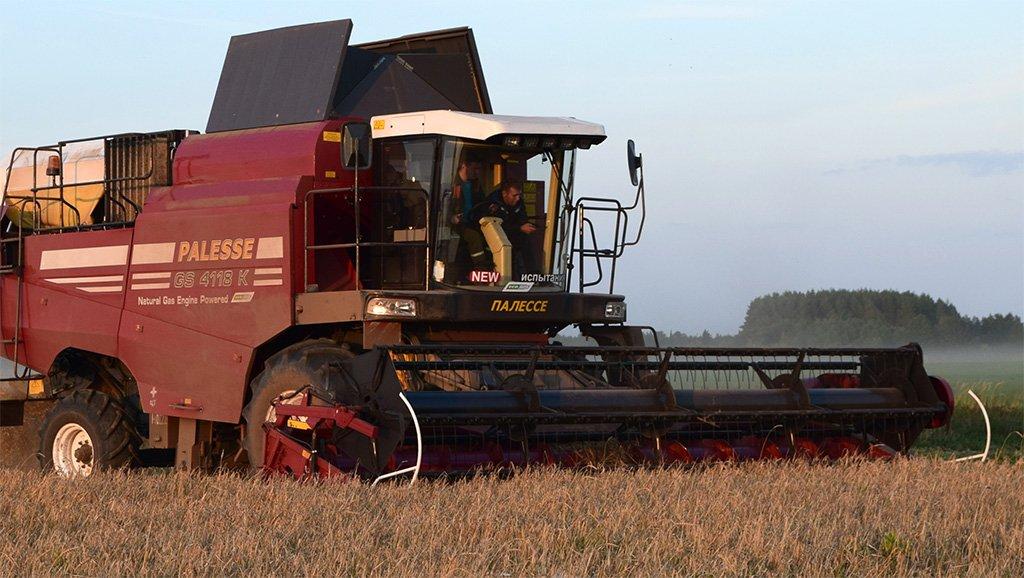 В Беларуси убрано около 20% зерновых, намолочено 1,5 млн тонн зерна