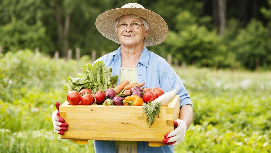Лунный календарь на последнюю декаду июля для садоводов-огородников